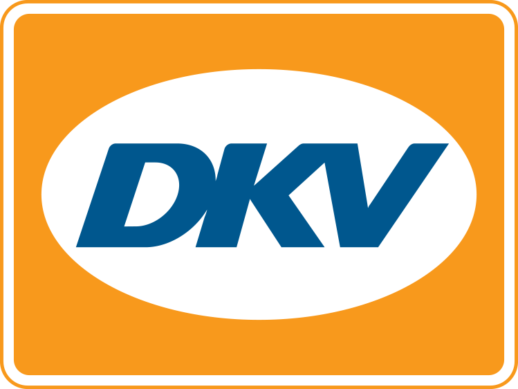 DKV Mobility Services Group Case Study