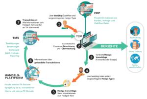 Prozess Treasury Software
